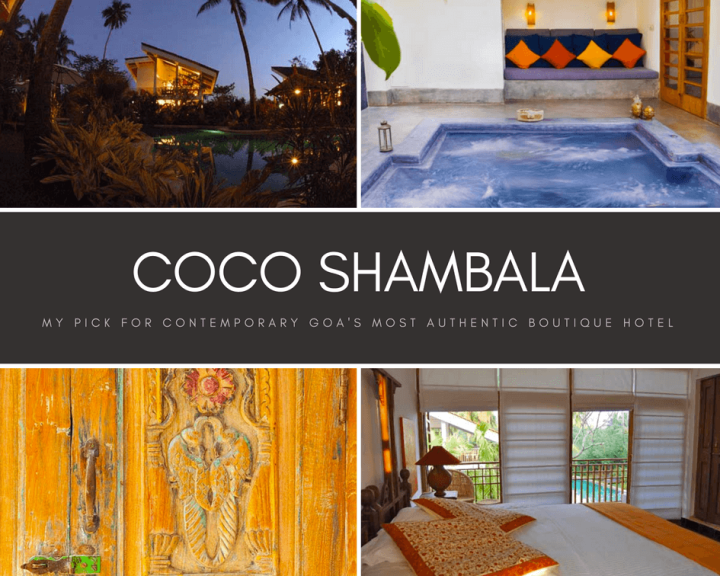 Coco Shambala (1)