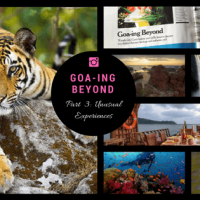 Goa-ing Beyond, part 3 : six unusual Goa experiences